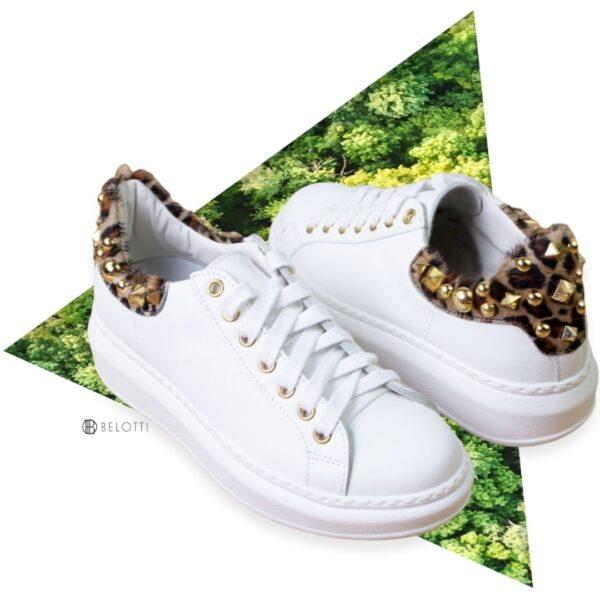 Crown Alocasia Bianco-Leopardato